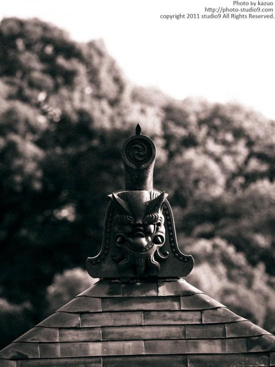 京都スナップ&サイクリング -モノクロⅠ-