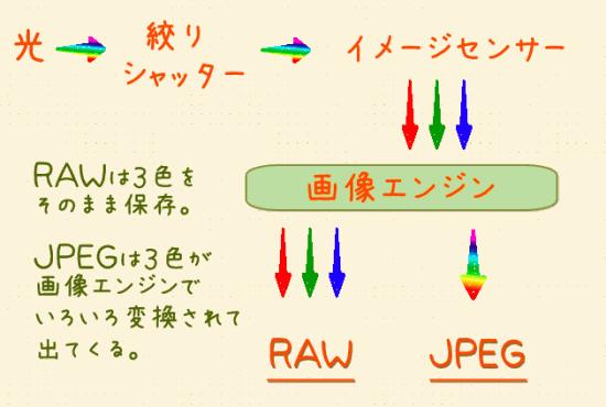 RAWの仕組み