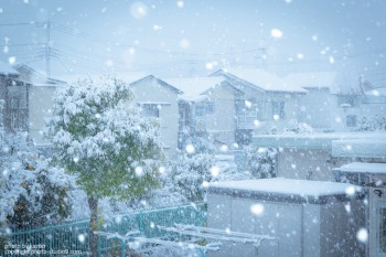雪をキレイに撮る