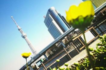 東京てくてく