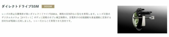 ソニー DDSSM