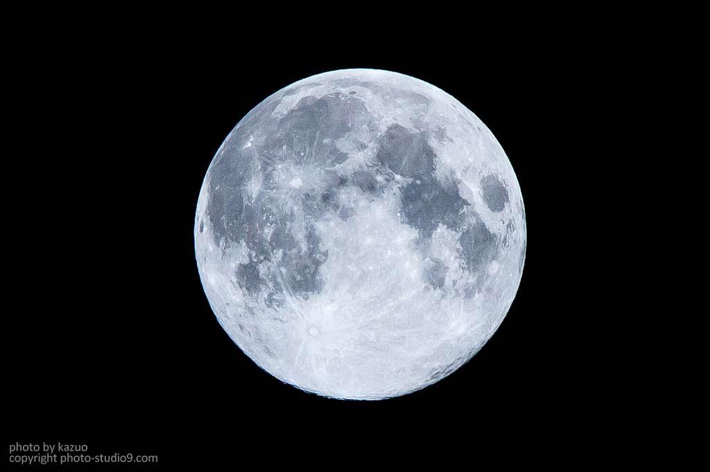 月は見ている