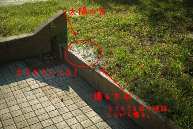 キラキラの見つけ方(詳細)