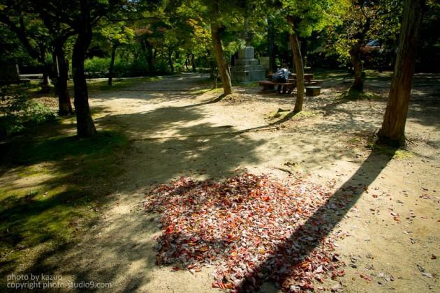 秋は足元から(引き)