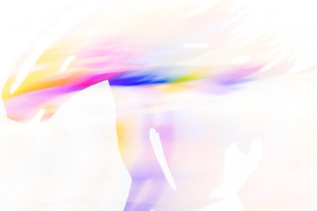 studio9の写真コンテスト(2014年10月)