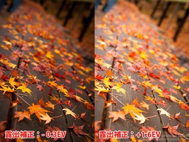 紅葉の撮り方 露出補正