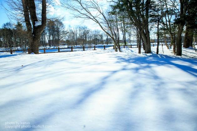 雪の撮り方 露出補正
