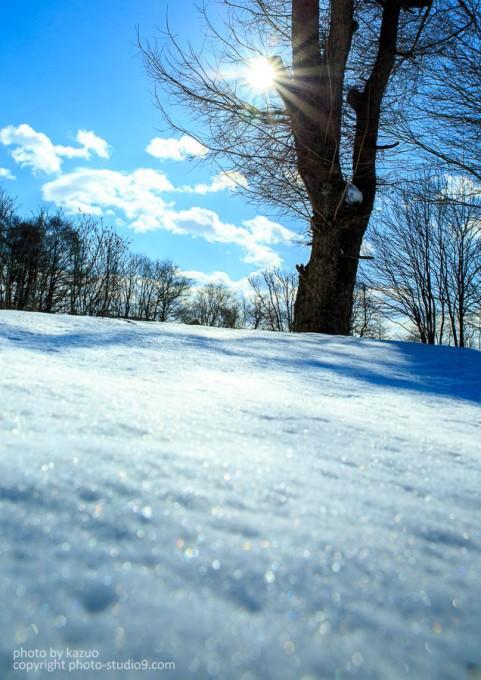 雪の撮り方