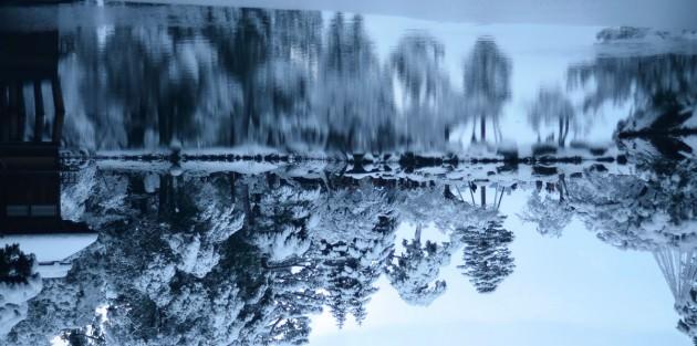 studio9の写真コンテスト(2015年1月)