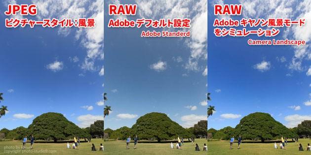 RAWとJPEGの違い 色