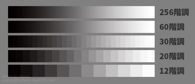 階調性 液晶モニターの選び方