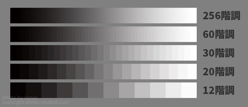 826b9f71648a7 また、一部の上位機種では10bitの出力に対応したモデルも存在します。10bitは1024階調ですから、1024 3   約10億色という途方もない数の 色で写真を表現できるためより ...