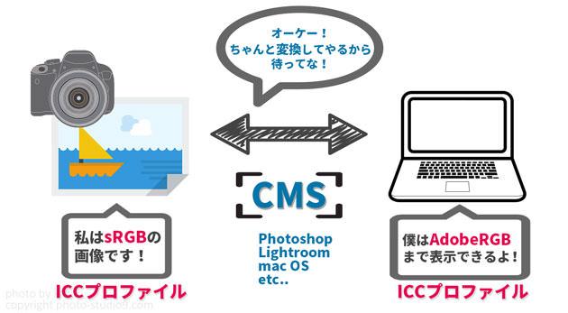 BenQのモニターをハードウェアキャリブレーションしてPhotoshop、Lightroomで活用する方法【Palette Master...