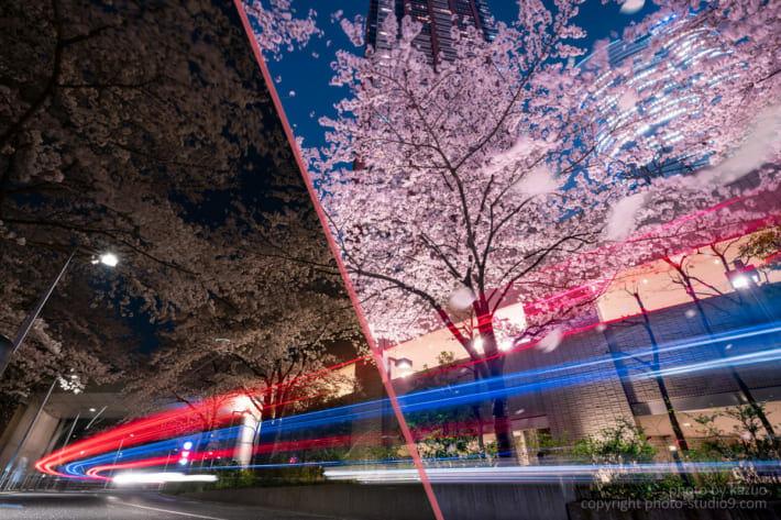 夜桜 現像 レタッチ