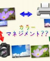 モニタの見た目とプリントの色を合わせる方法![写真カラーマネジメント]
